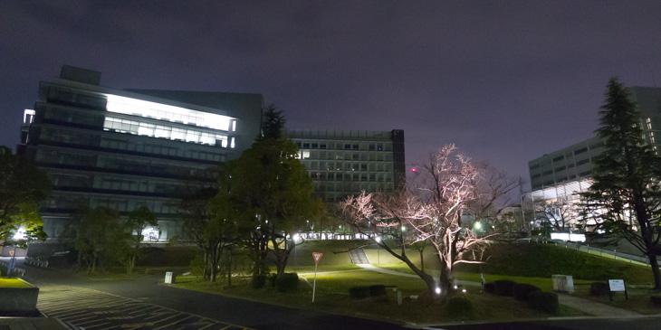 教育・臨床心理専攻|福岡大学大学院人文科学研究科